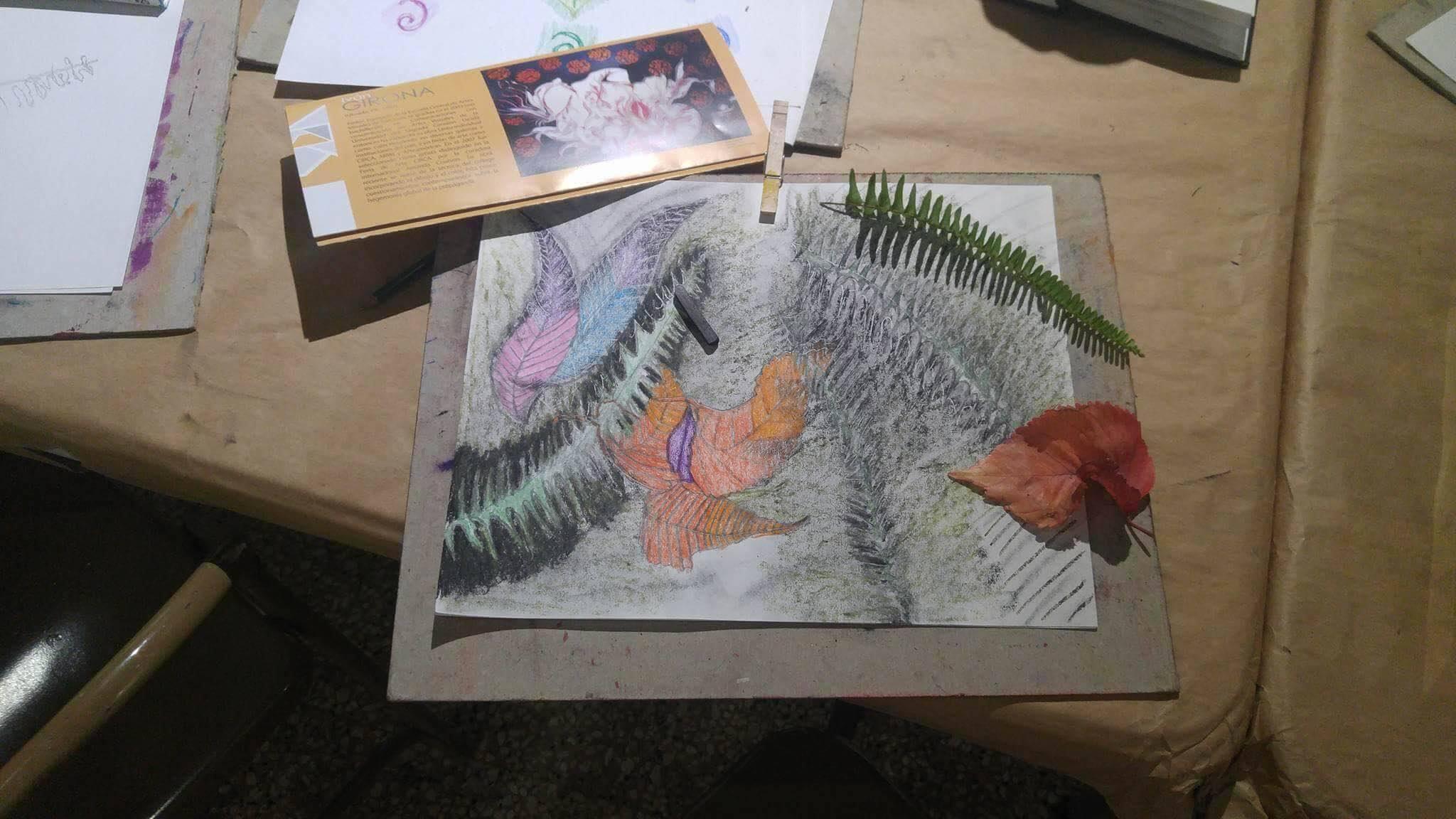 Taller de Dibujo y Formas Orgánicas en Espacio Emergente