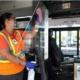 Tren Urbano y la AMA Vuelven a sus Rutas con Estrictas Medidas